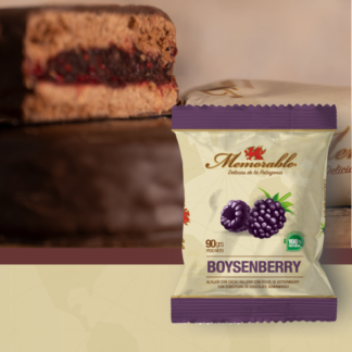 ALFAJOR PATAGONICO DE BOYSENBERRY 90grs. – MEMORABLE